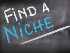 How to Choose a Niche and Make Money?