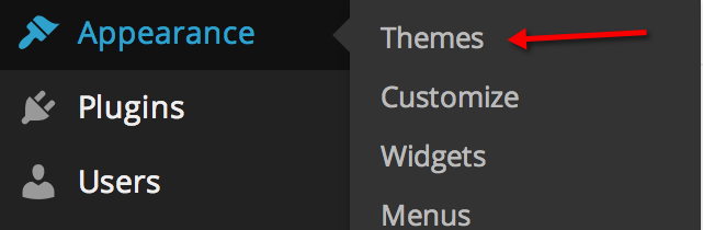 website theme option