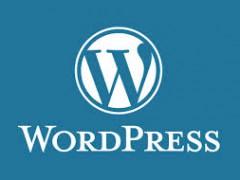 The Power of WordPress: Why WordPress?