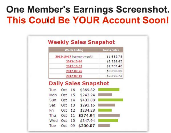 fake earnings screenshot