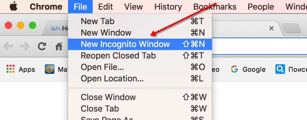 doing-search-through-incognito-mode