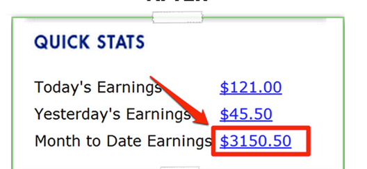 fake earnings