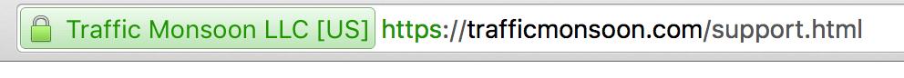 TM-website-crash