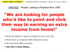 Home Online Institute Scam Review
