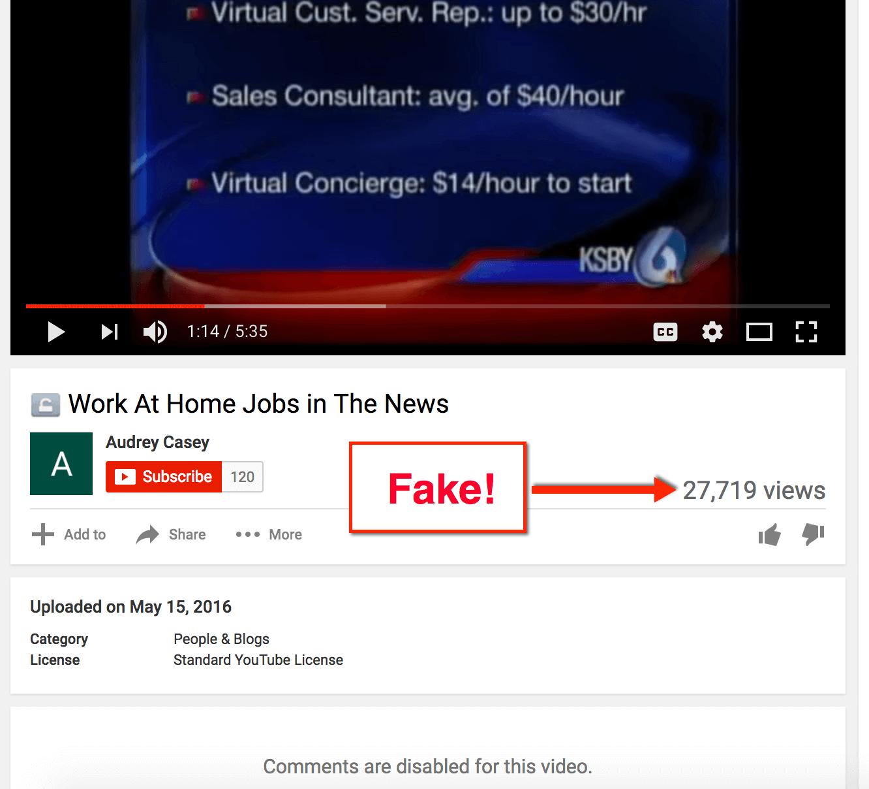 fake views