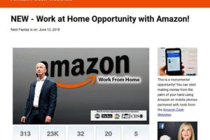 Amazon Cash Websites Review – Amazon Business Opportunity?
