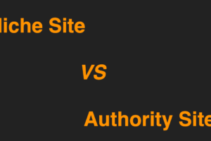 Niche Site VS Authority Site