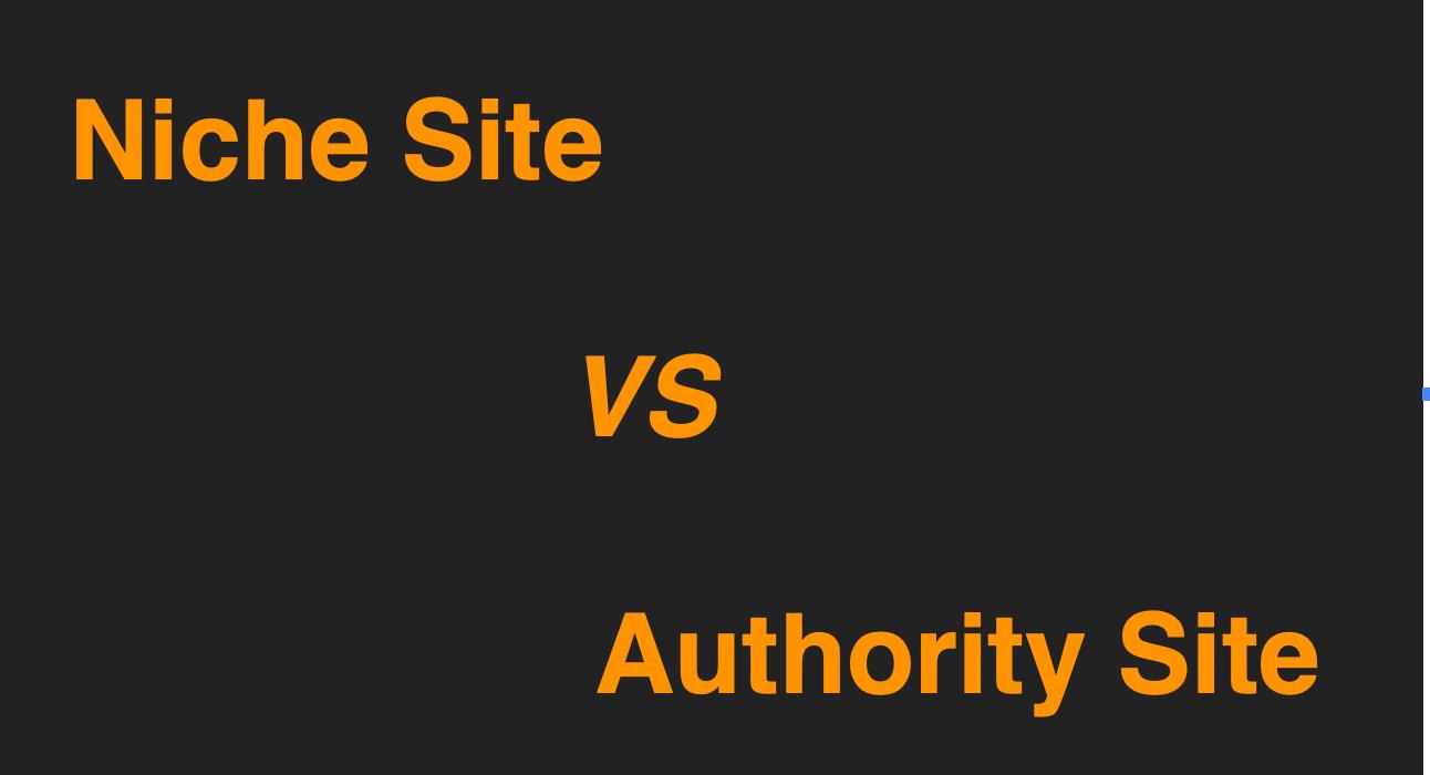 niche-vs-authority